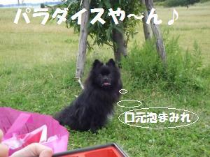 1012-10_convert_20081012210803.jpg