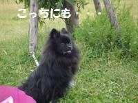1012-12_convert_20081012210924.jpg