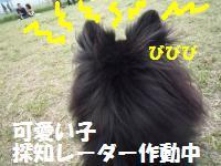 1012-18_convert_20081012211426.jpg