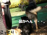1013-12_convert_20081014114837.jpg