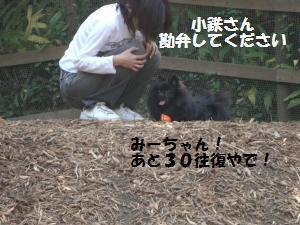 1013-14_convert_20081014115001.jpg