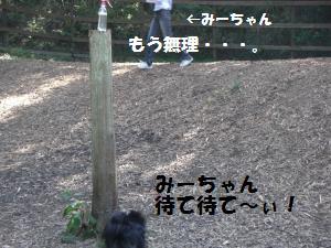 1013-16_convert_20081014115132.jpg