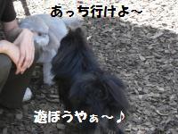 1013-1_convert_20081014113435.jpg