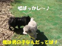 1013-2_convert_20081014113704.jpg