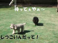 1013-4_convert_20081014114001.jpg