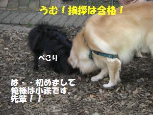 1013-7_convert_20081014114221.jpg