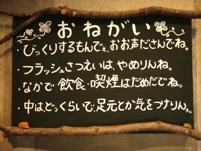 015_convert_20110505114246.jpg