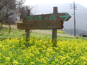kotori_09_04_19_2.jpg