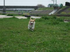 走る走る走る