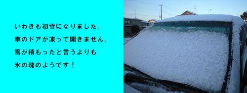 いわきも初雪