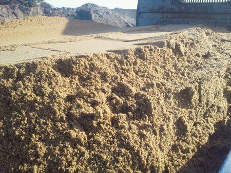 特殊砂 砂場