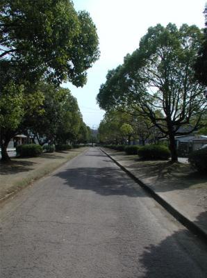 紀伊風土記の丘01-はじめの道