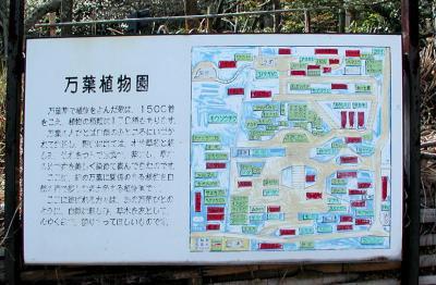 紀伊風土記の丘10-植物配置図