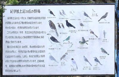 紀伊風土記の丘14-野鳥の看板