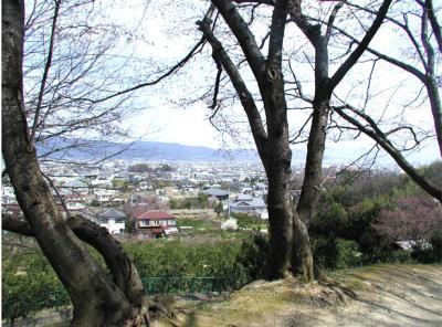 紀伊風土記の丘17-和歌山市展望