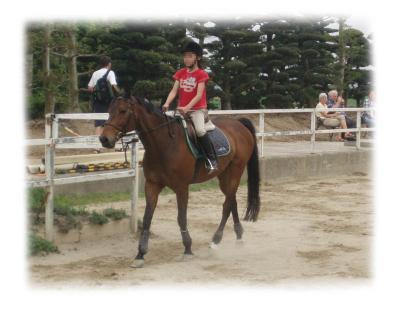 馬の牧場02