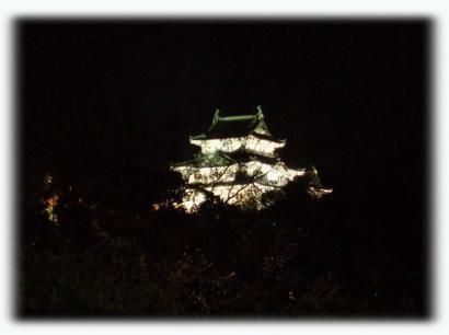 和歌山城の夜桜01