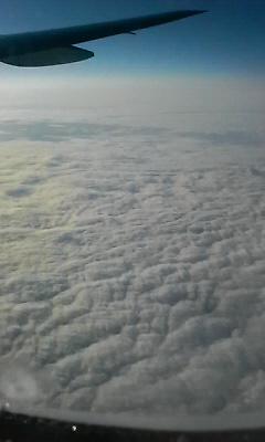 200809200135000.jpg
