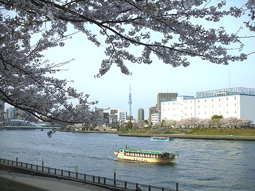 春の隅田川