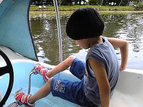 白鳥ボート2