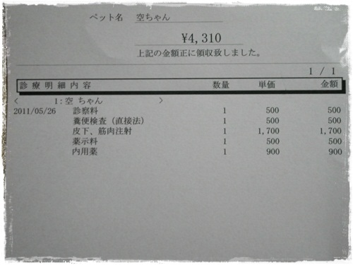 IMGP0999.jpg