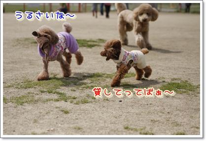 10_20100322224611.jpg