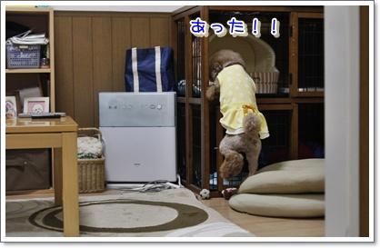10_20100601005420.jpg