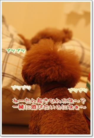 10_20100611003220.jpg