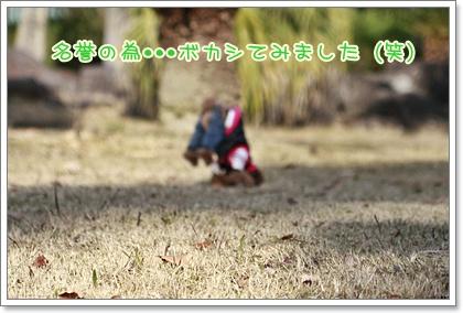 10_20110104180951.jpg