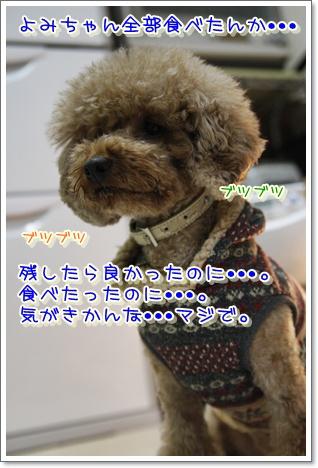 11_20100308230423.jpg