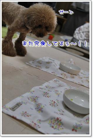 11_20100319234808.jpg