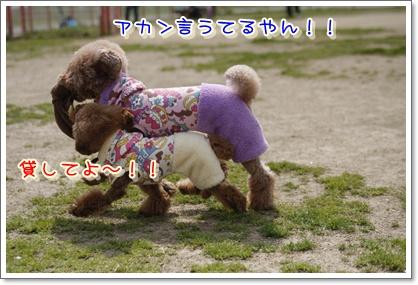 11_20100322224611.jpg