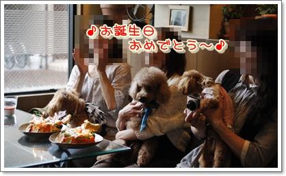 11_20100616000841.jpg