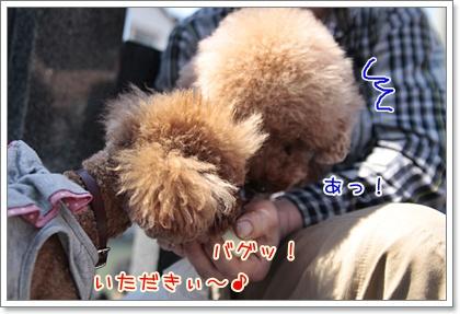 11_20110429232008.jpg