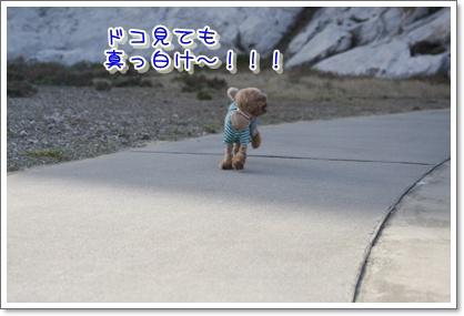 12_20100412210127.jpg