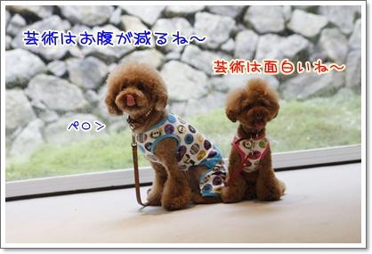 12_20100711171630.jpg