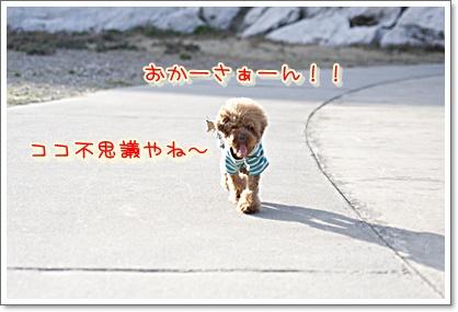 13_20100412211647.jpg