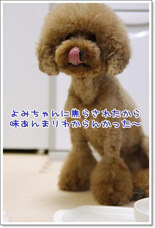 13_20100720194712.jpg