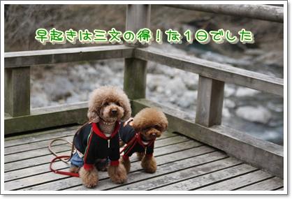 14_20100329230946.jpg