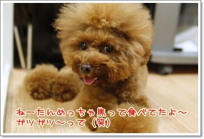 14_20100720194712.jpg