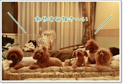 14_20100921202315.jpg