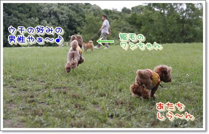 15_20100620020058.jpg