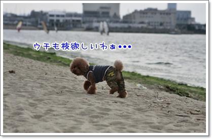 15_20101018221543.jpg