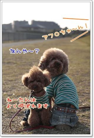 15_20110328225802.jpg