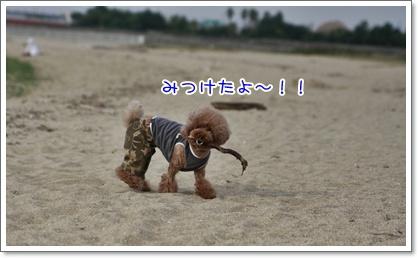 16_20101018221543.jpg