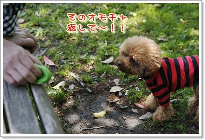 17_20100503210839.jpg