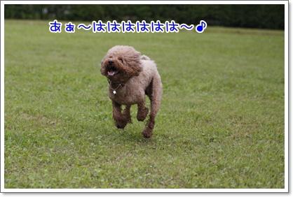 17_20100628004213.jpg