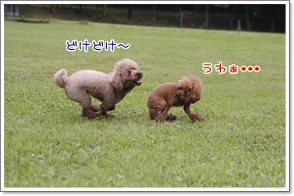 18_20100628004212.jpg