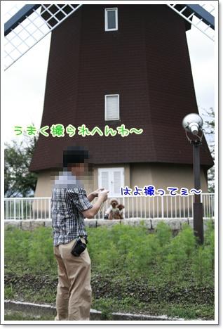 19_20100928184810.jpg