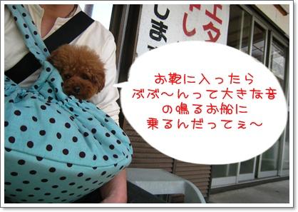 1_20100509211619.jpg